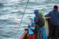 pozorování velryb v Húsavíku